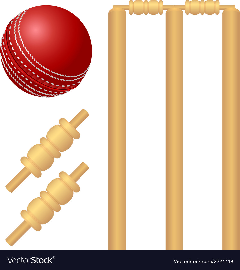 Cricket ball and stump vector image