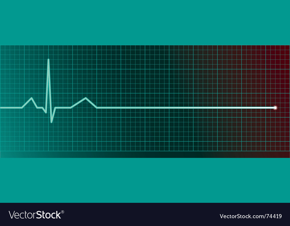Heart rate monitor vector image