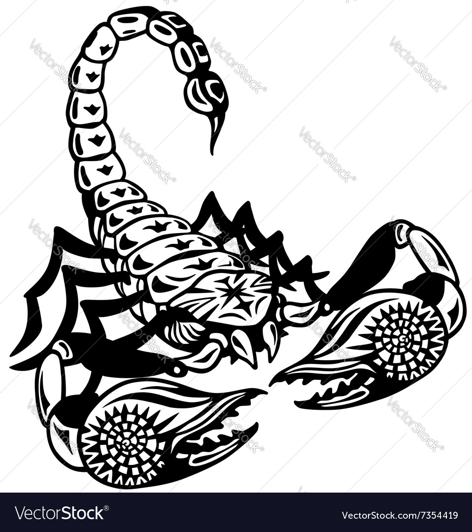 Scorpion black white vector image