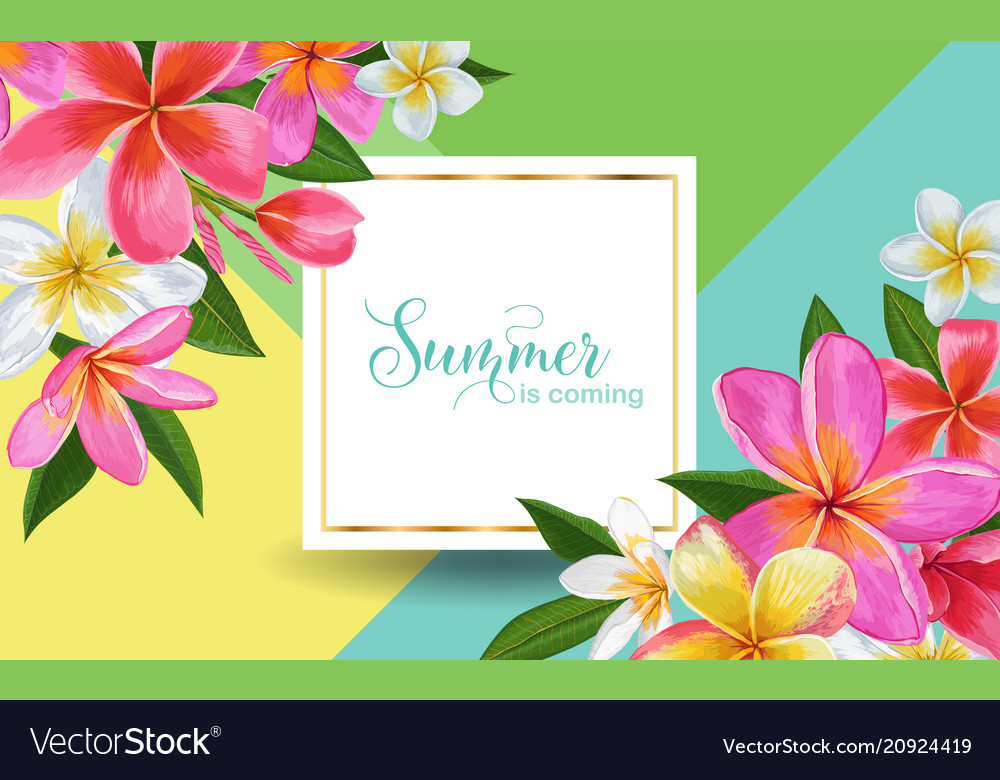 Summertime floral poster tropical plumeria