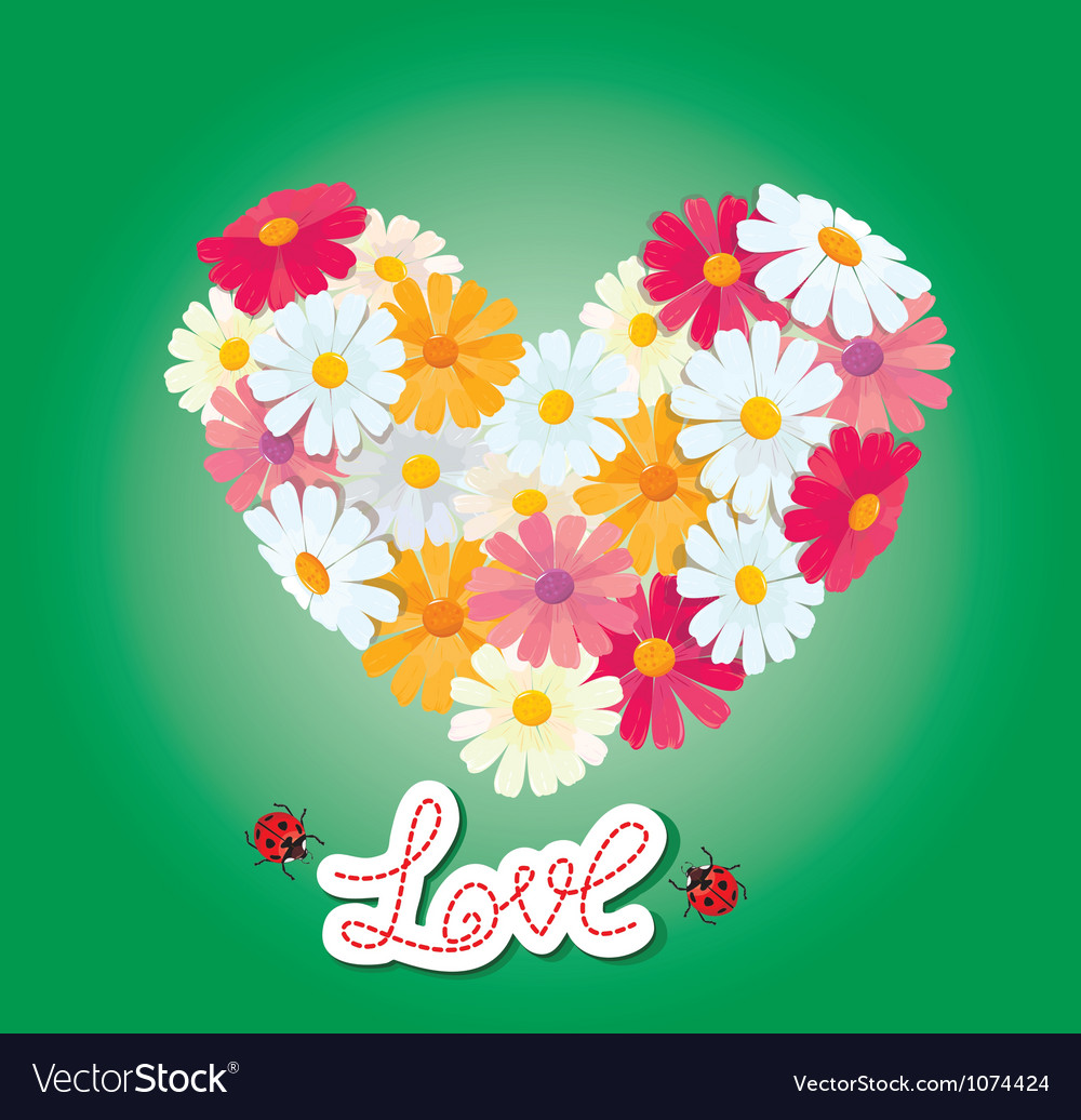 Heart is made of daisies on a green background