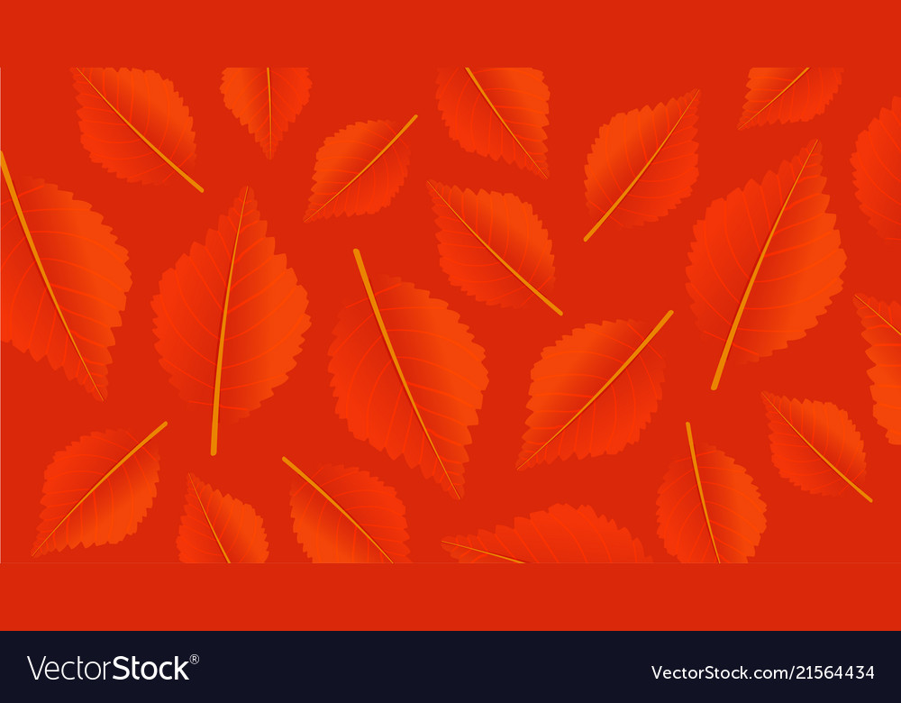 Autumn orange background with leaves modern