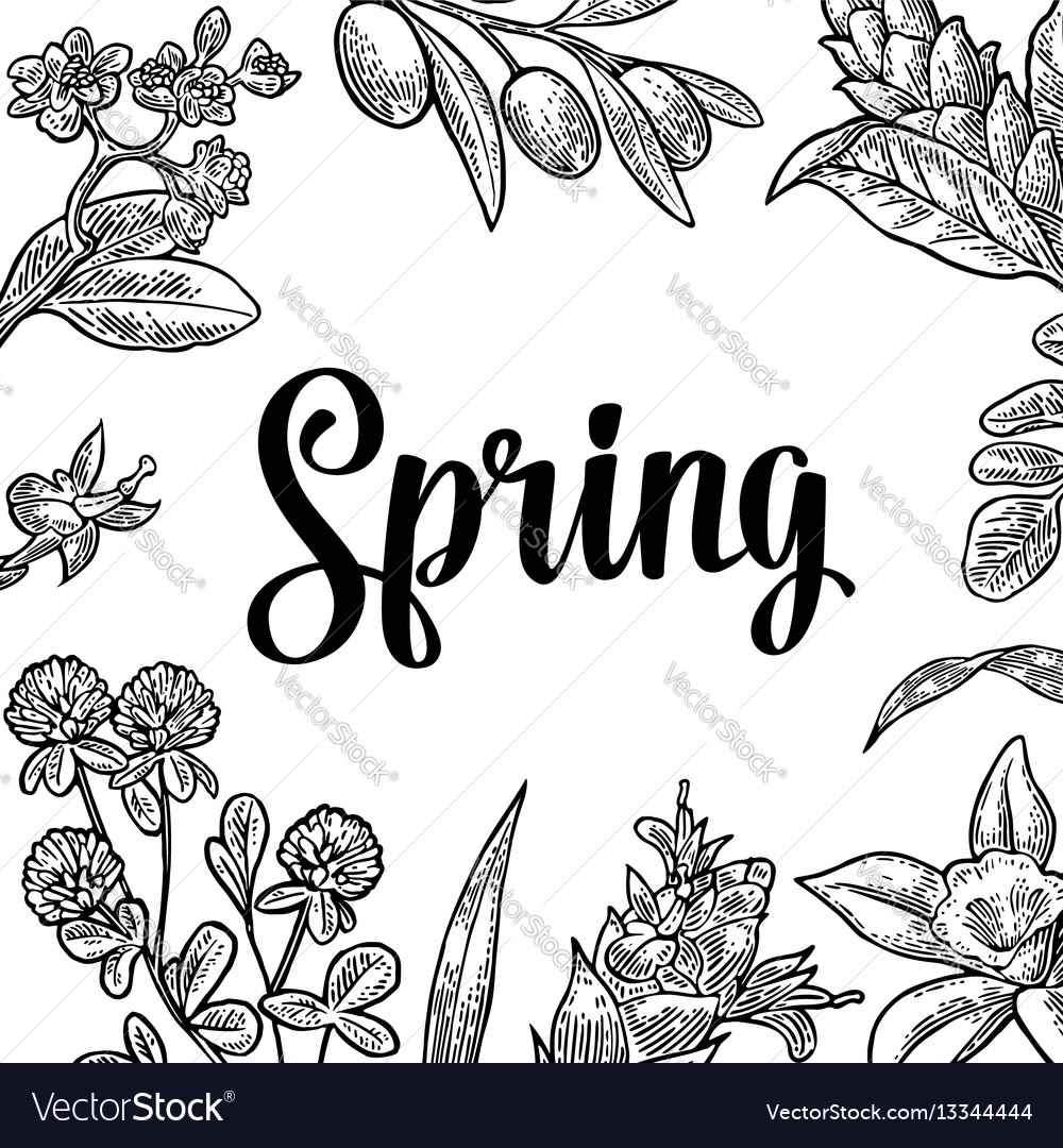 Square Poster With Flower Blooming Branch Leaves Vector Image