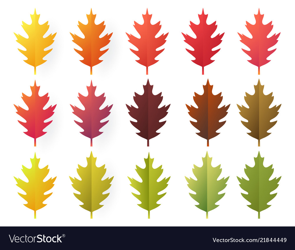 - Paper Cut Autumn Leaves Set Fall Leaves Colorful Vector Image