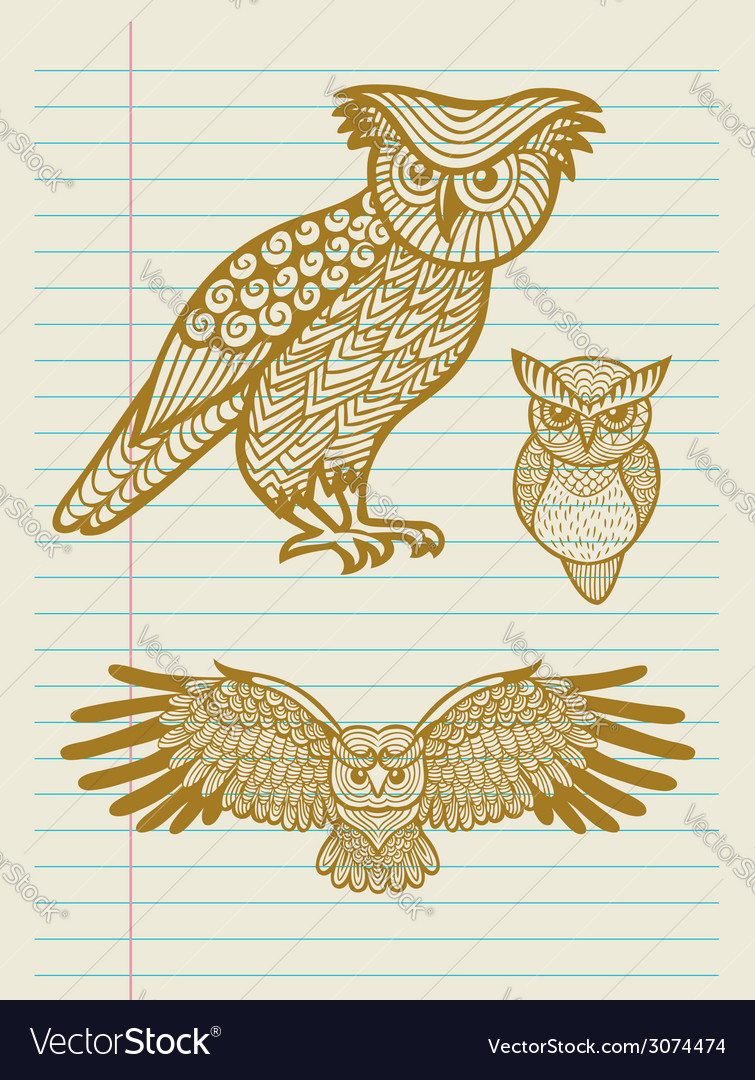 Vintage Decorative Owl Sketches