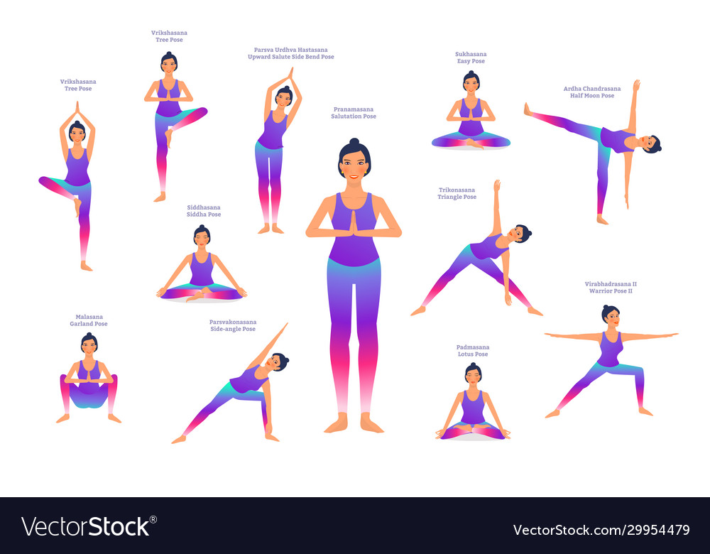 Set Woman In Different Yoga Poses Names Of Vector Image