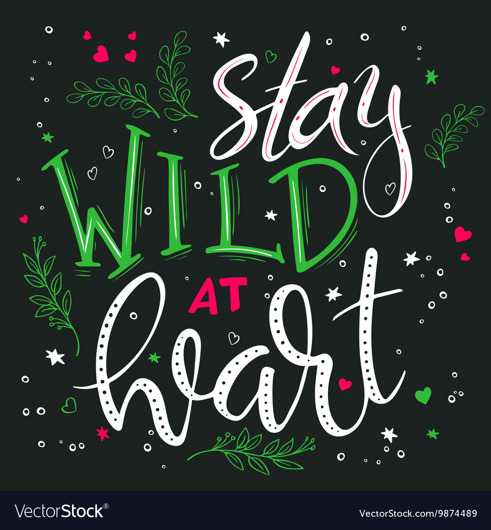 Hand drawing lettering phrase - stay wild at heart