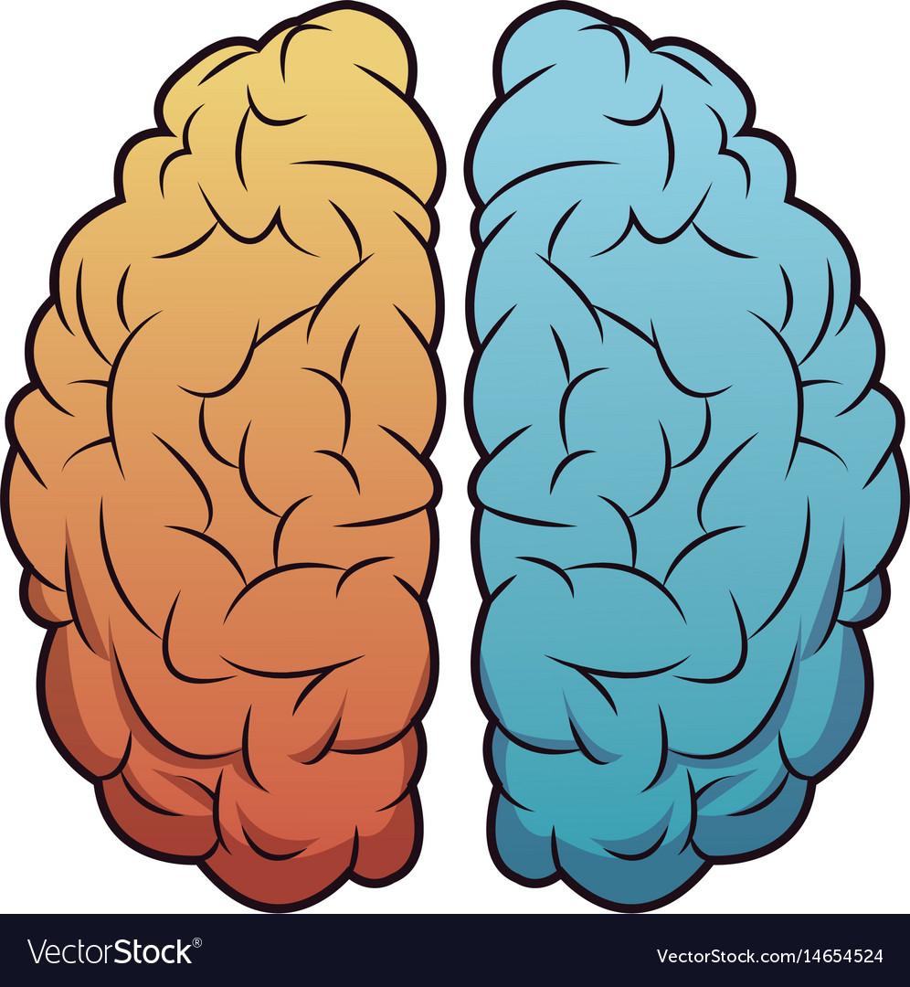 Brain mind idea creativity memory image