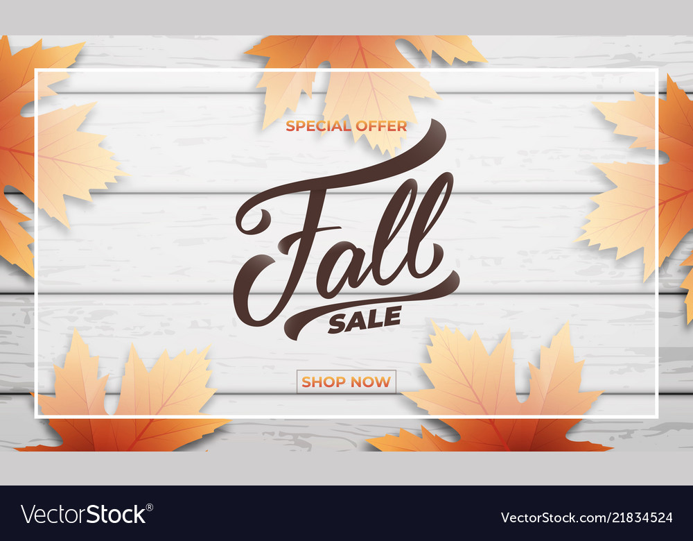 Fall sale background layout design fall lettering