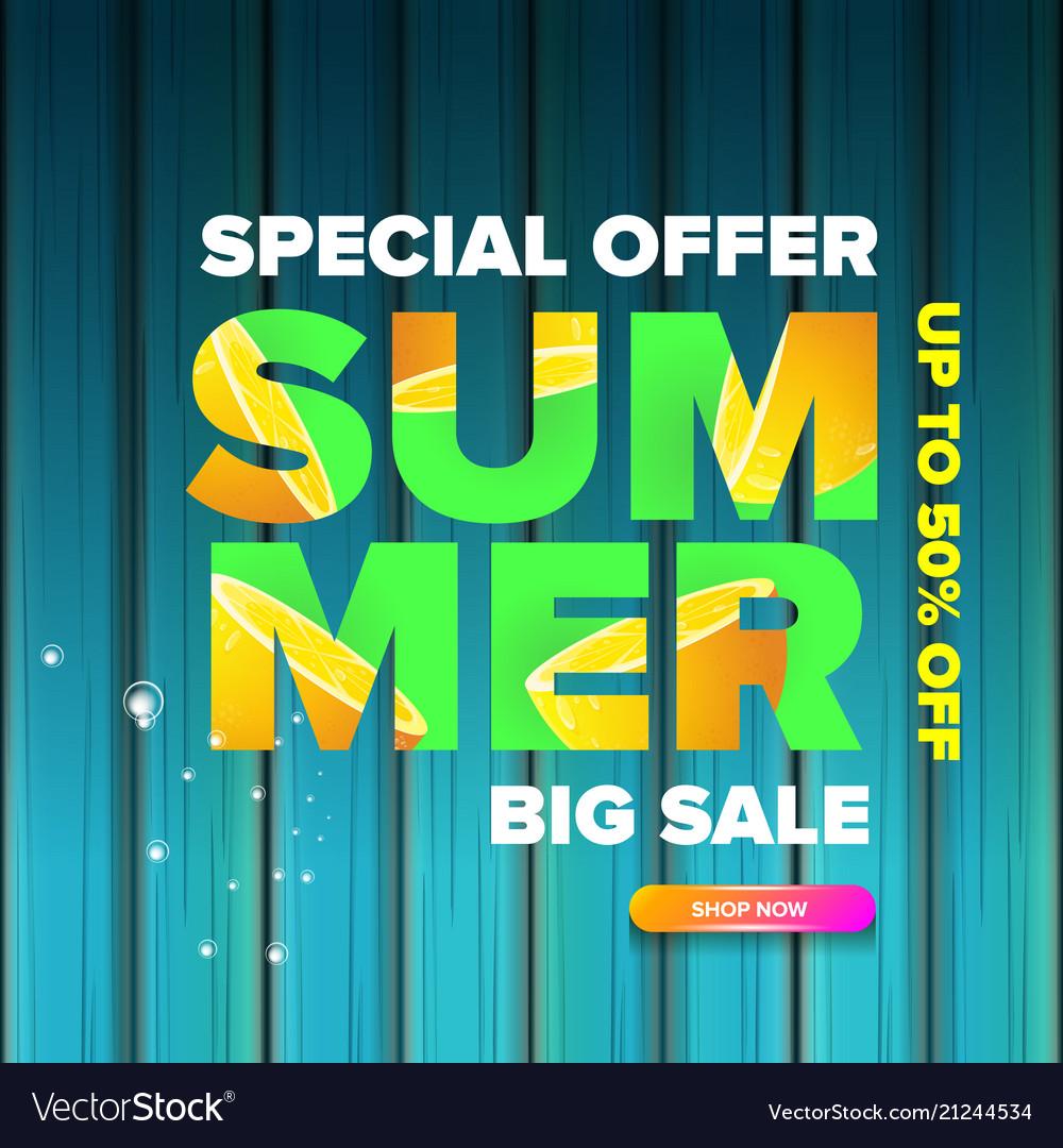Summer sale modern color design template web Vector Image