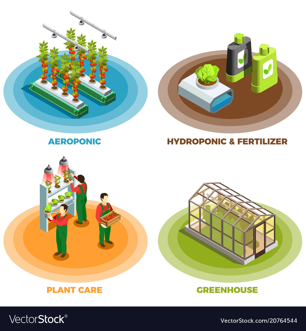 Hydroponic and aeroponic 2x2 design concept vector image
