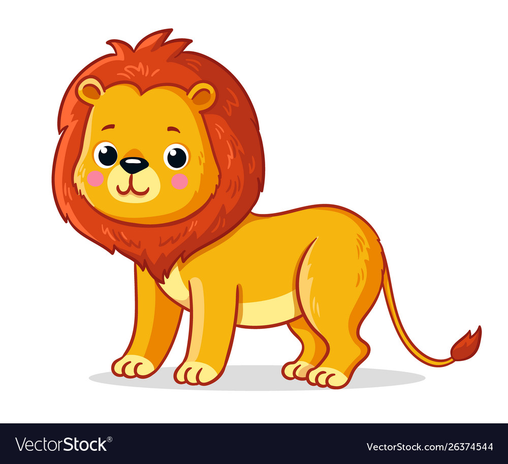 Young lion on a white background cute african