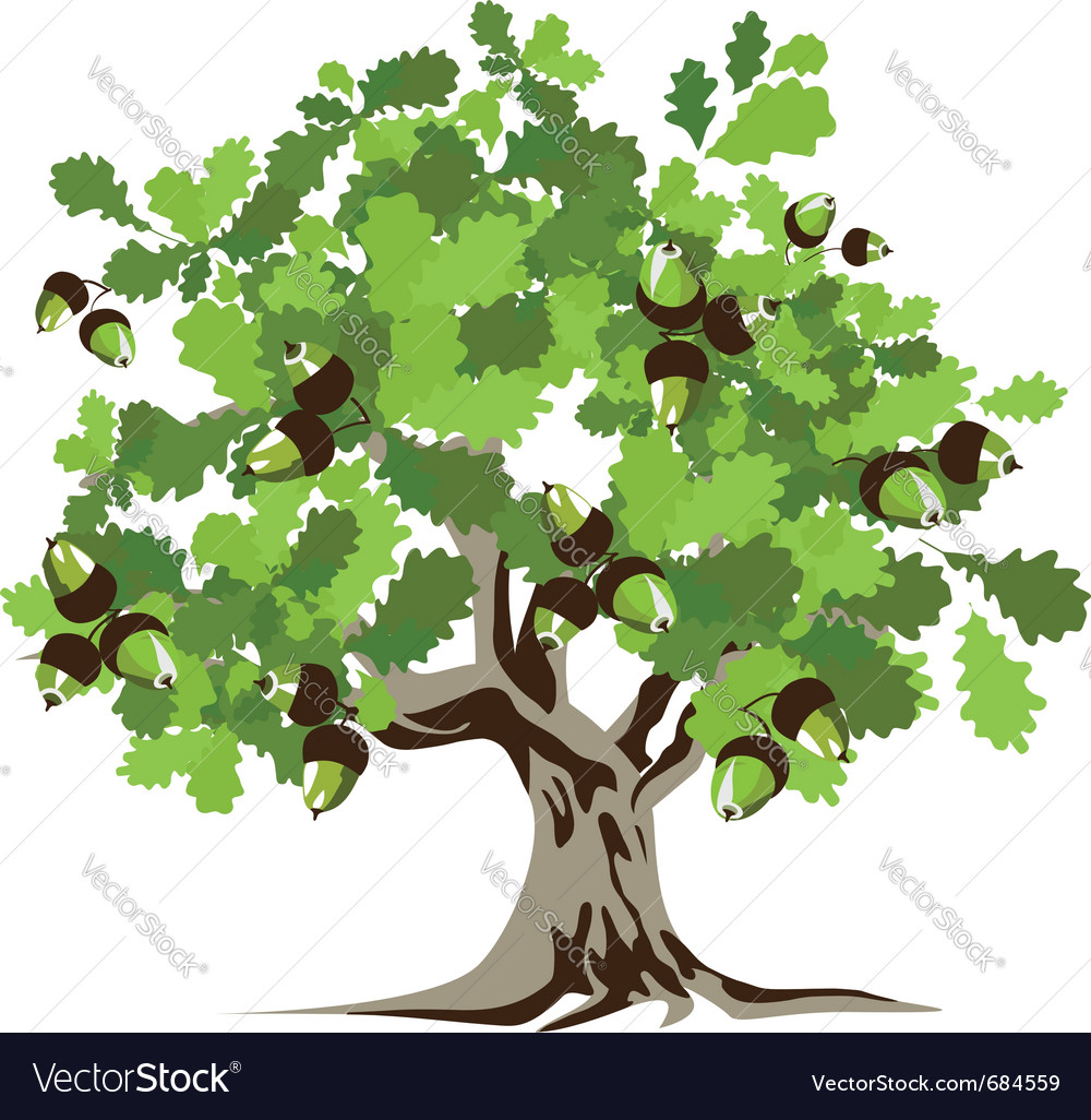 big green oak tree royalty free vector image vectorstock rh vectorstock com oak tree vector black oak tree victorian boots