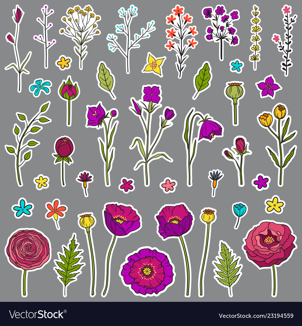 Floral hand drawn stickers