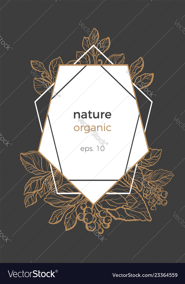 template nature frame geometric royalty free vector image vectorstock