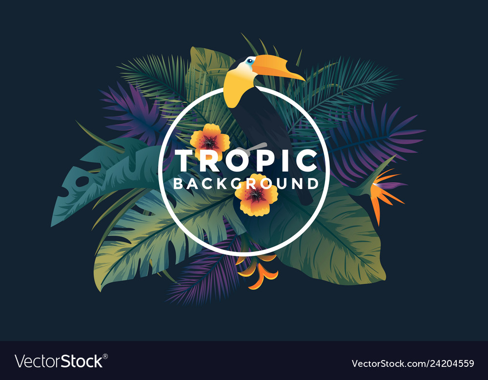 Tropical background with frame 7