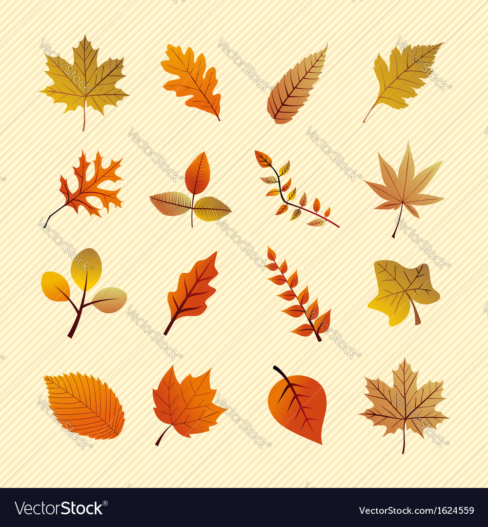 Vintage autumn season tree leaves set EPS10 file