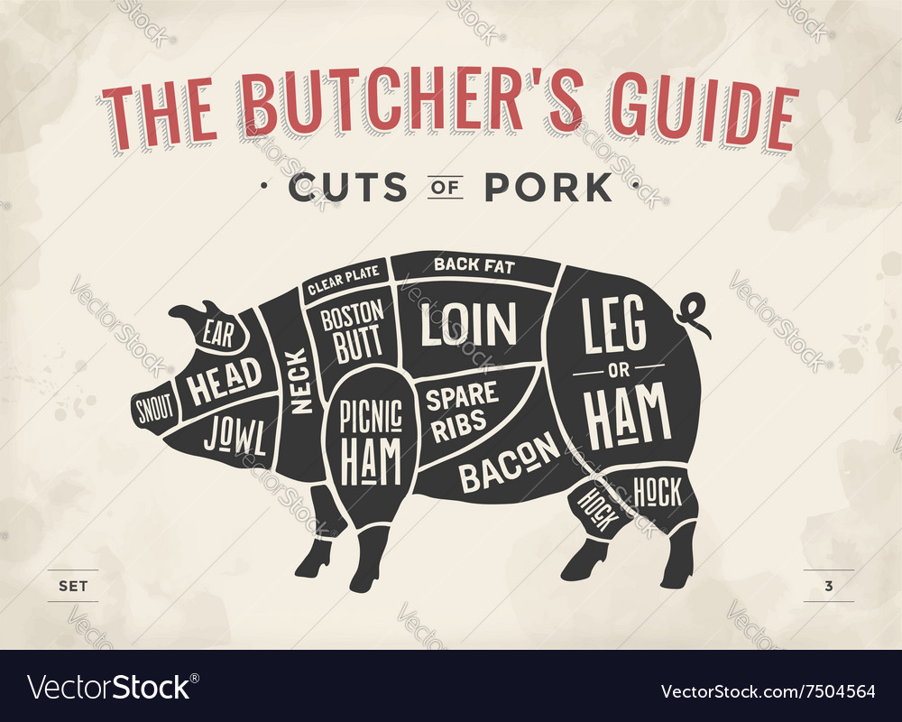 Cut meat set poster butcher diagram scheme