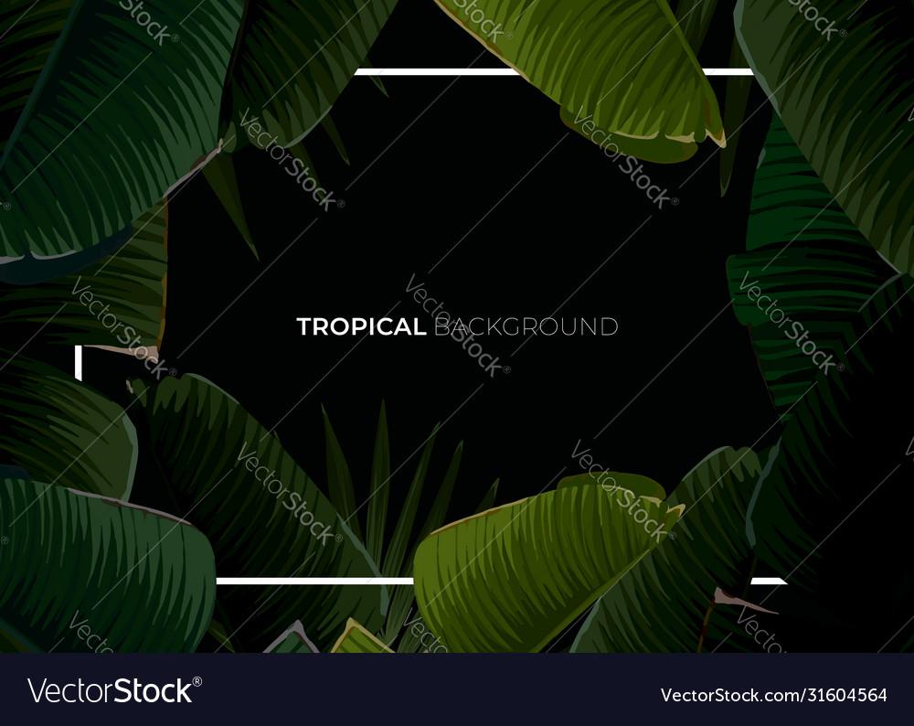 Dark tropical summer design with banana palm