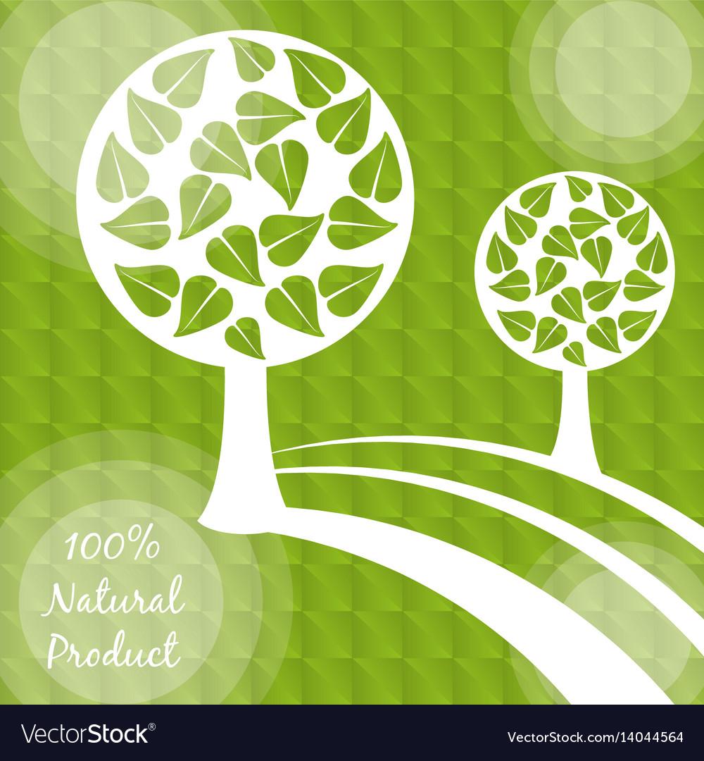 Natural product food vegetarian diet vector image