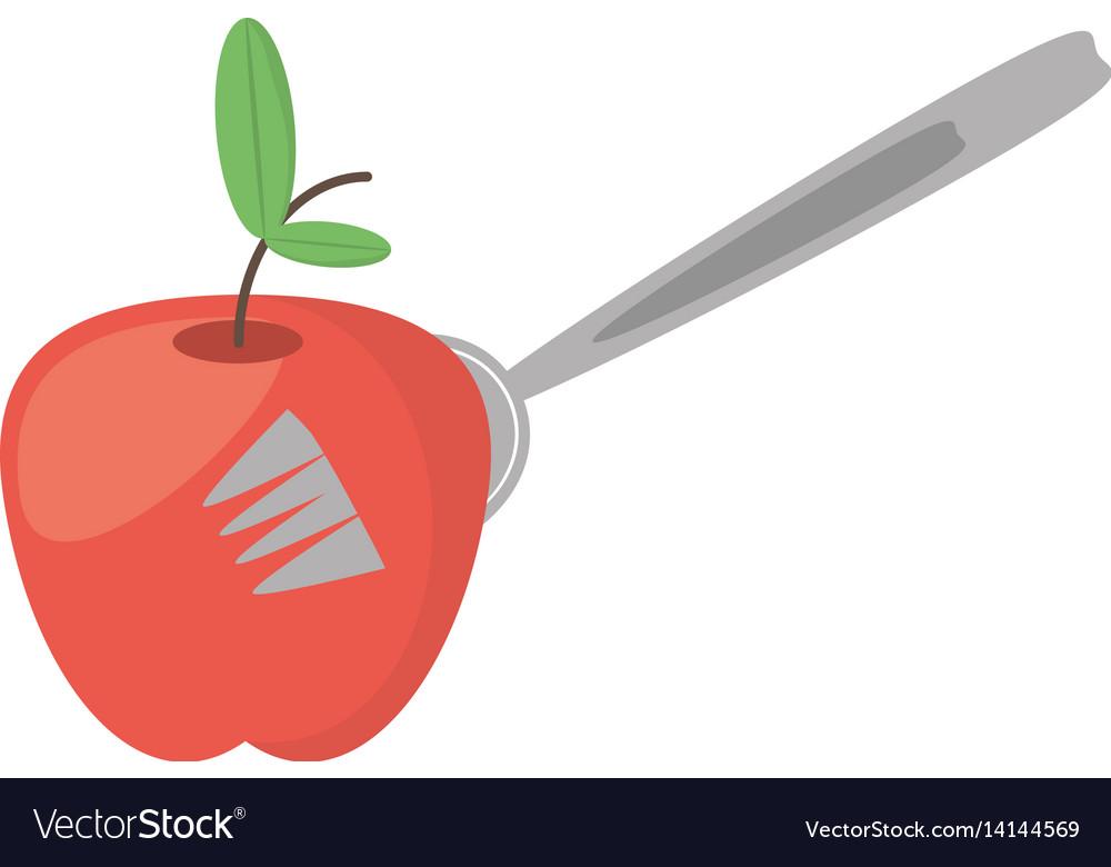 Apple fruit fork food picnic