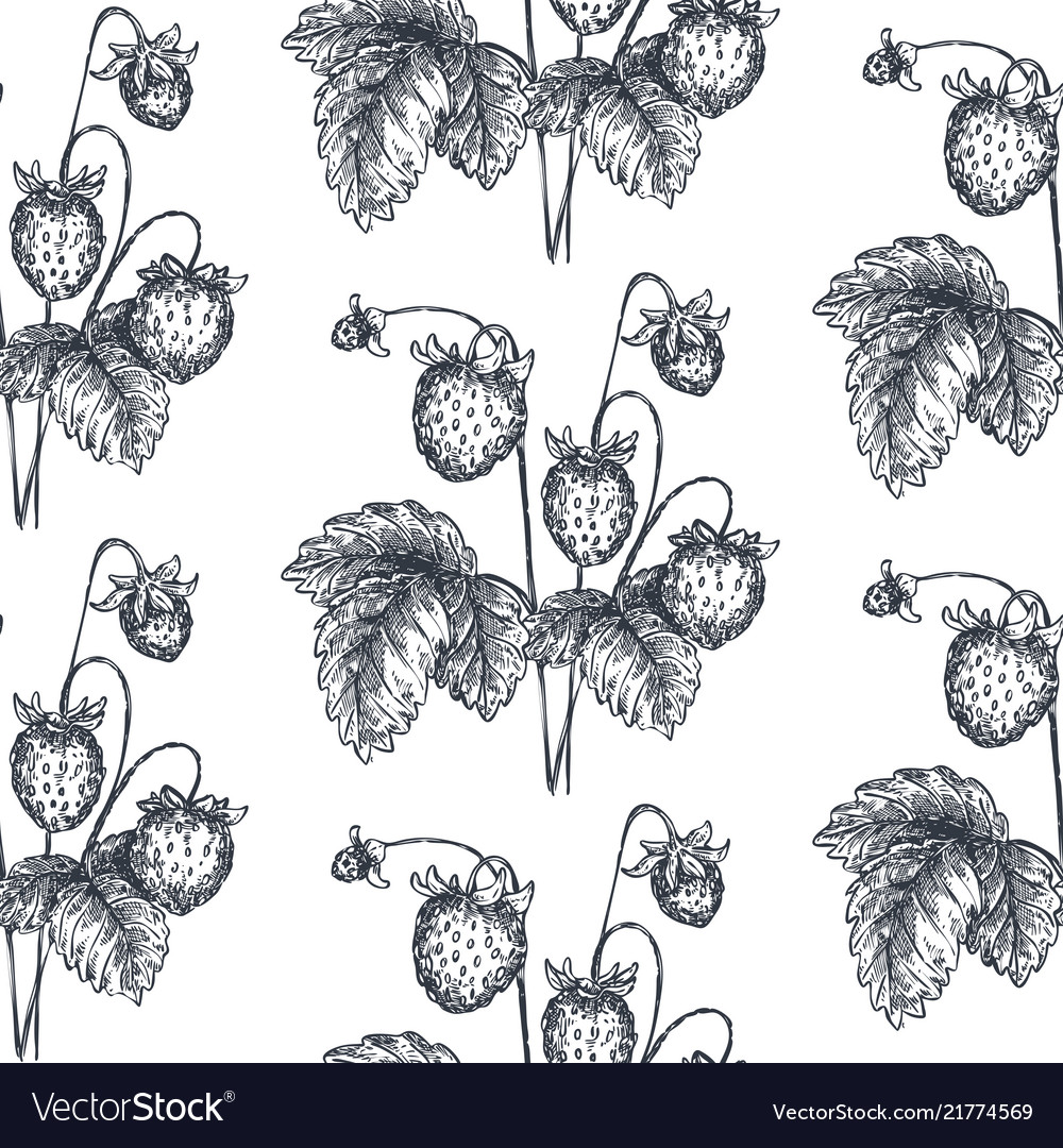 Seamless pattern with hand drawn
