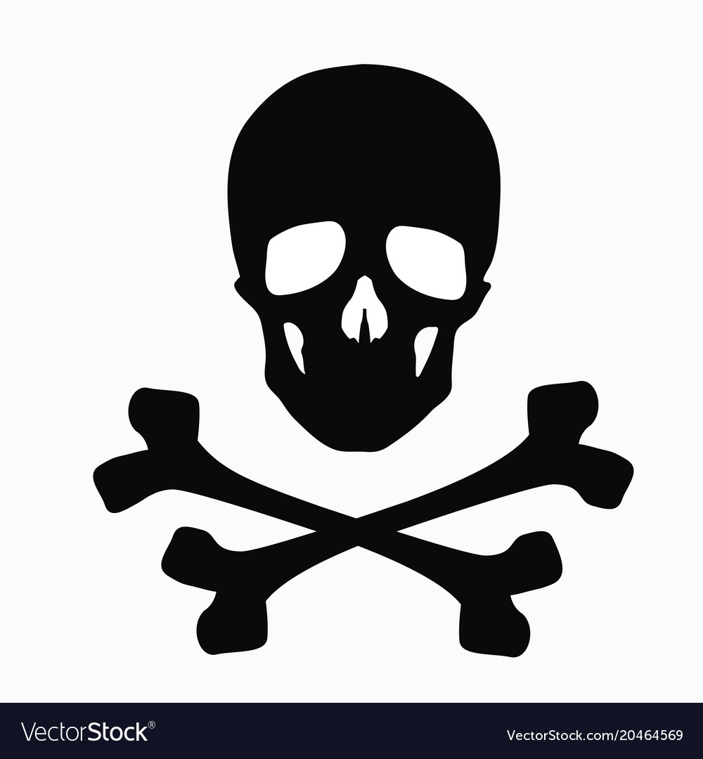 And pdf skull bones