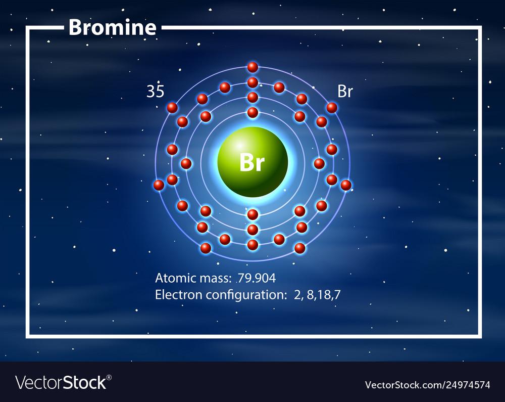 chemist atom bromine diagram vector image