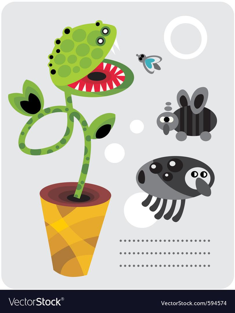 Venice flytrap