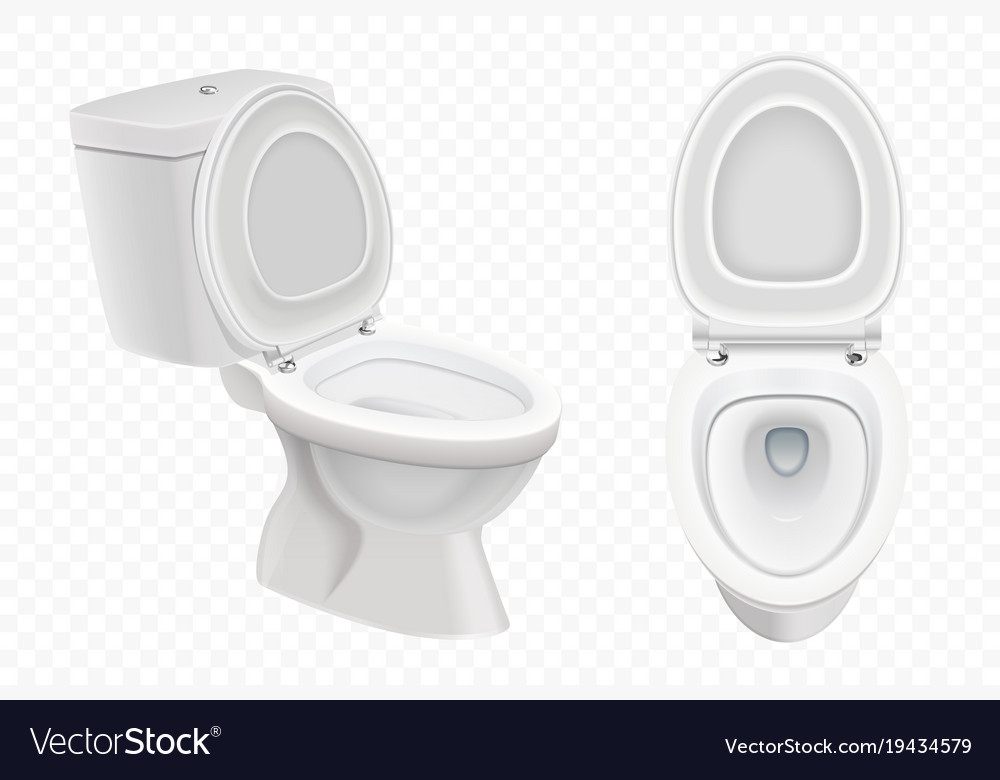 Realistic toilet bowl mockup 3d white toilet vector image