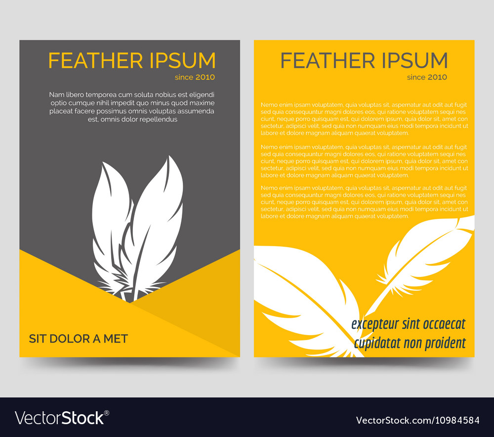 brochure flyers template with feathers royalty free vector