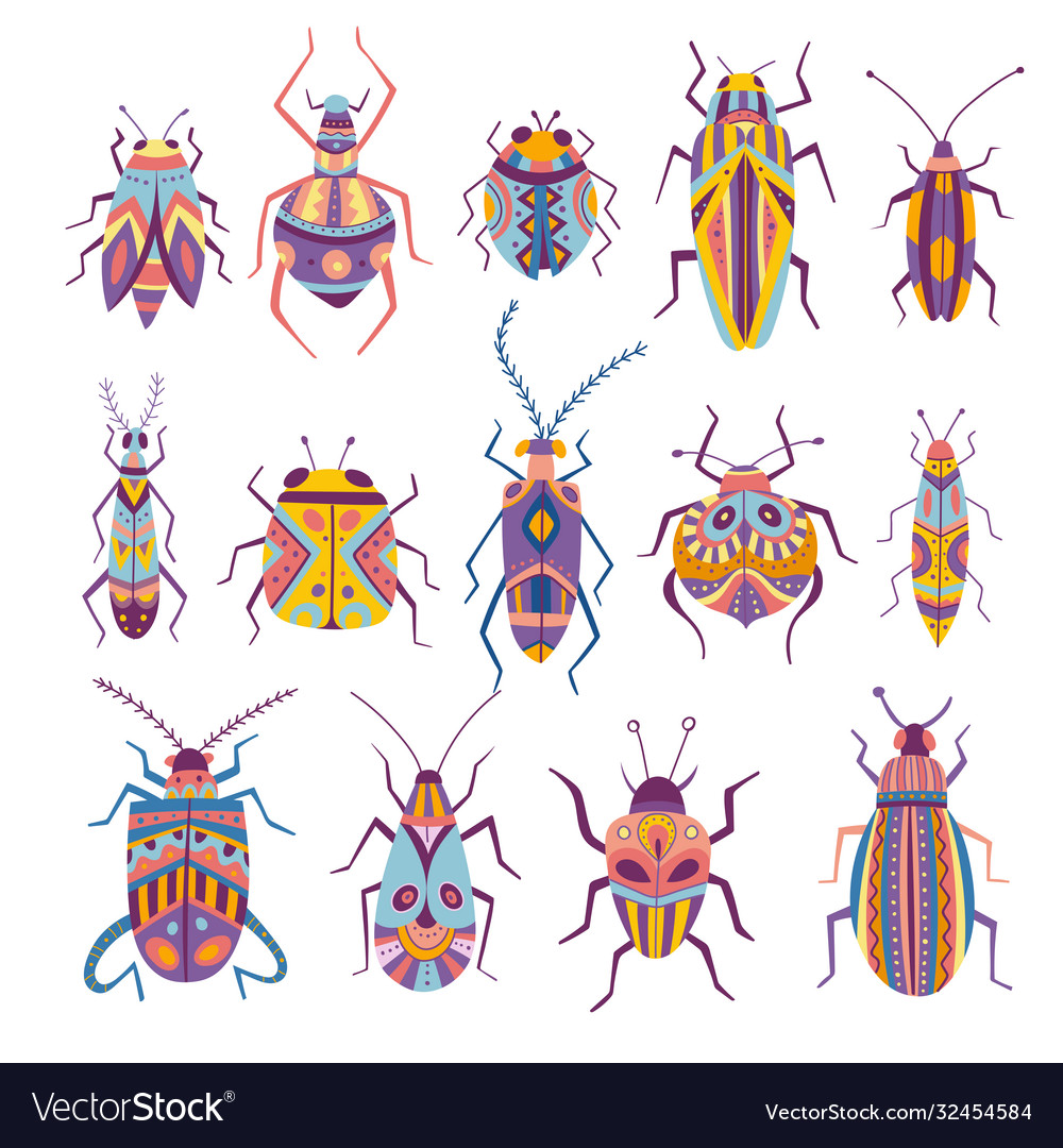 Colorful beetles collection