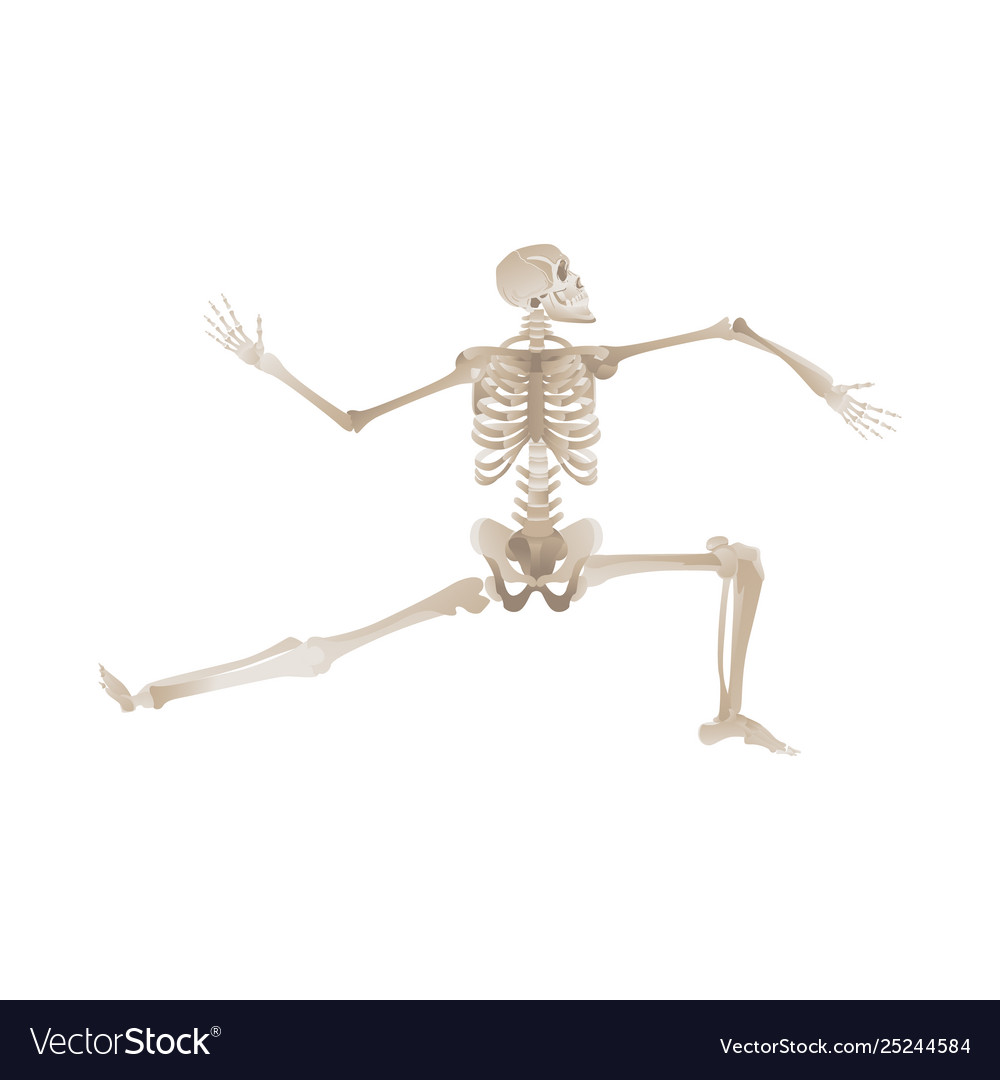 Flat funny human skeleton dancing icon