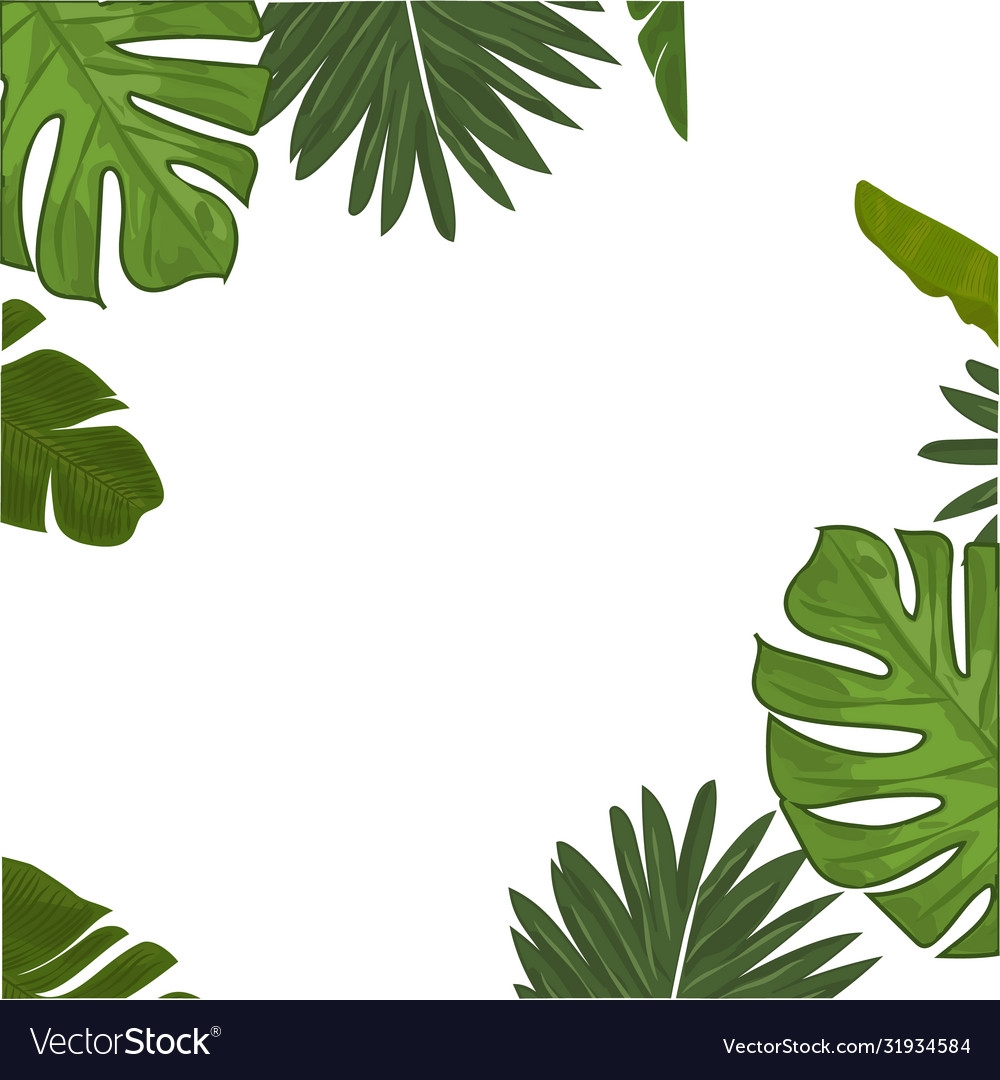 Tropical Leaves Border Frame Royalty Free Vector Image Choose from over a million free vectors, clipart graphics, vector art images, design templates, and illustrations created by artists worldwide! vectorstock