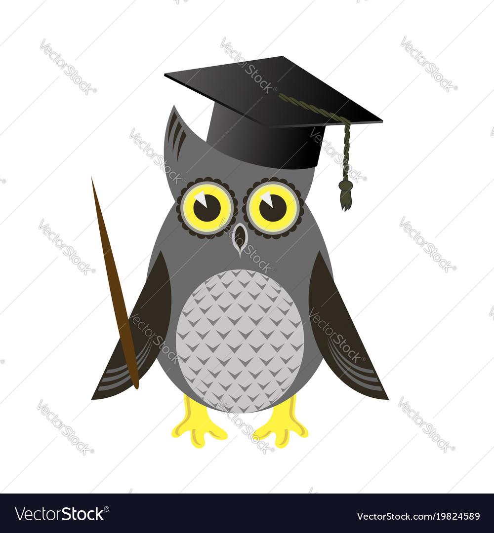 Cute owl bird with graduation cap