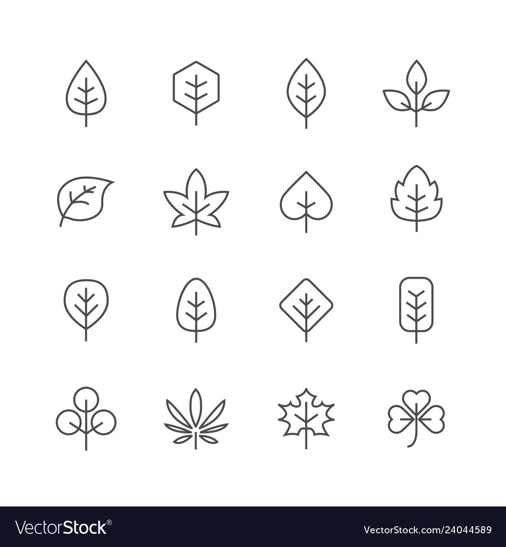 Fall leaves line icons set