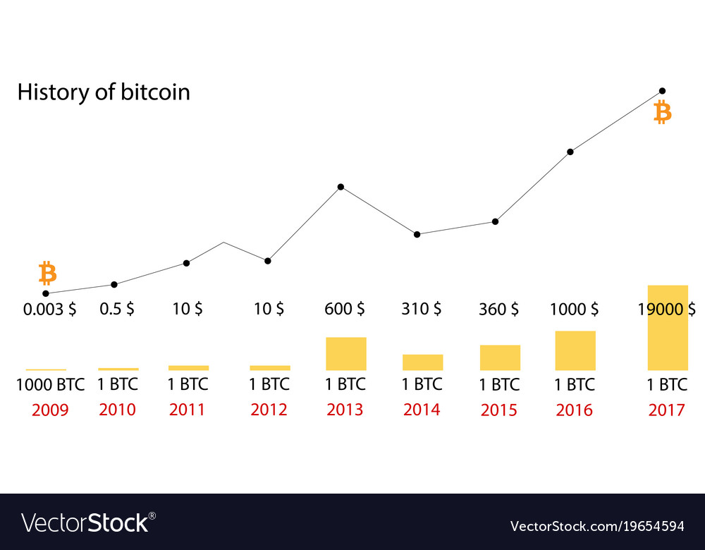 Bitcoin Price History Infographics Changes Vector Image