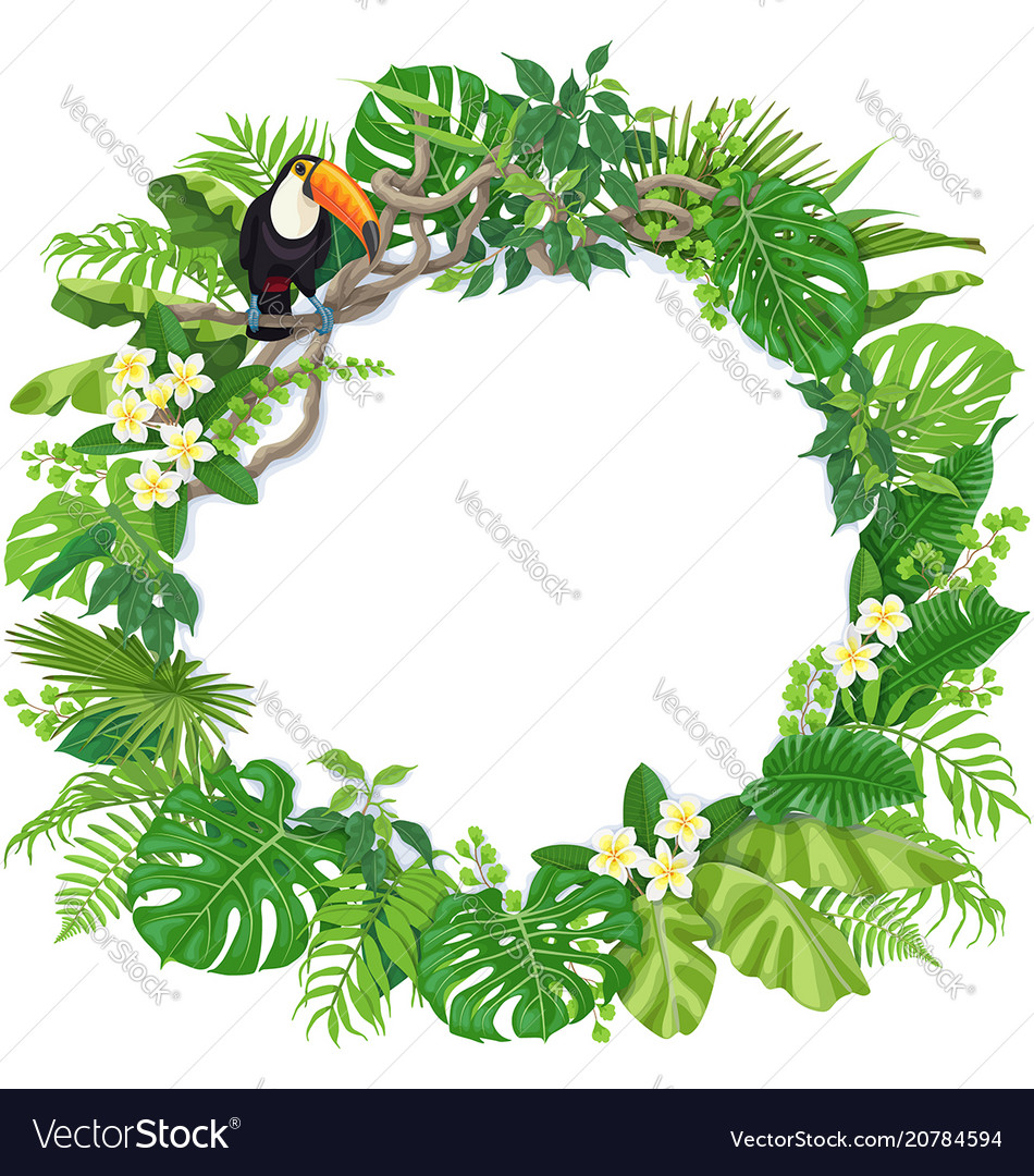 Round frame with tropical plants and toucan