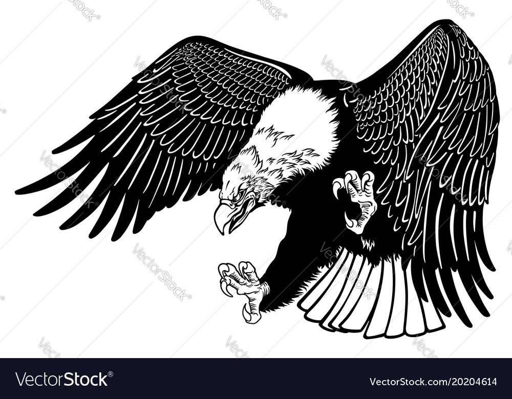 Eagle in the fly black white