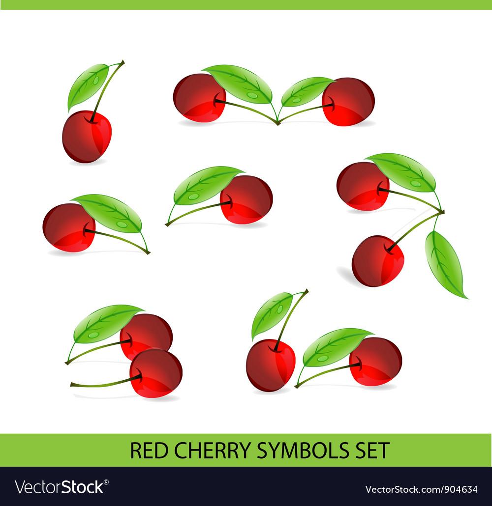 glass cherry symbols royalty free vector image