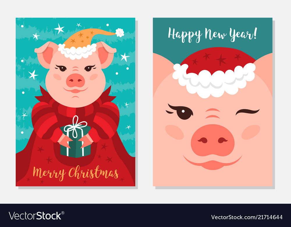 Funny christmas pigs greeting cards merry