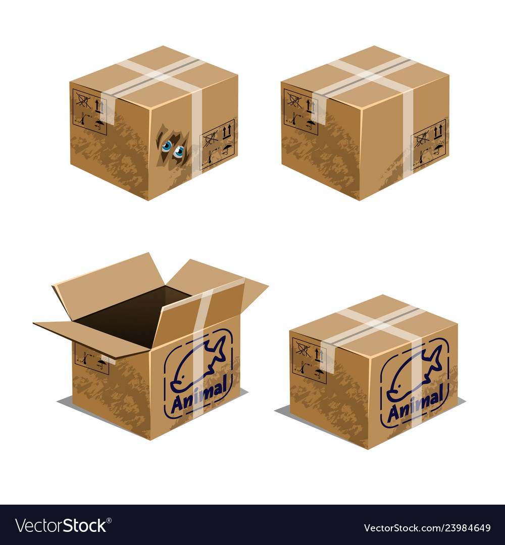 Set of carton boxes for transporting animals