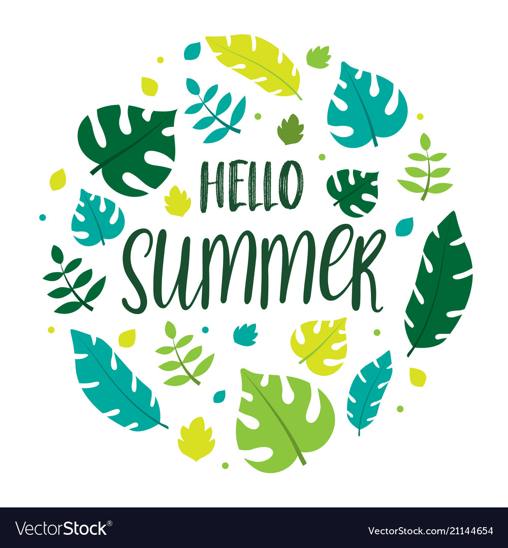 Hello summer lettering with summer leaves