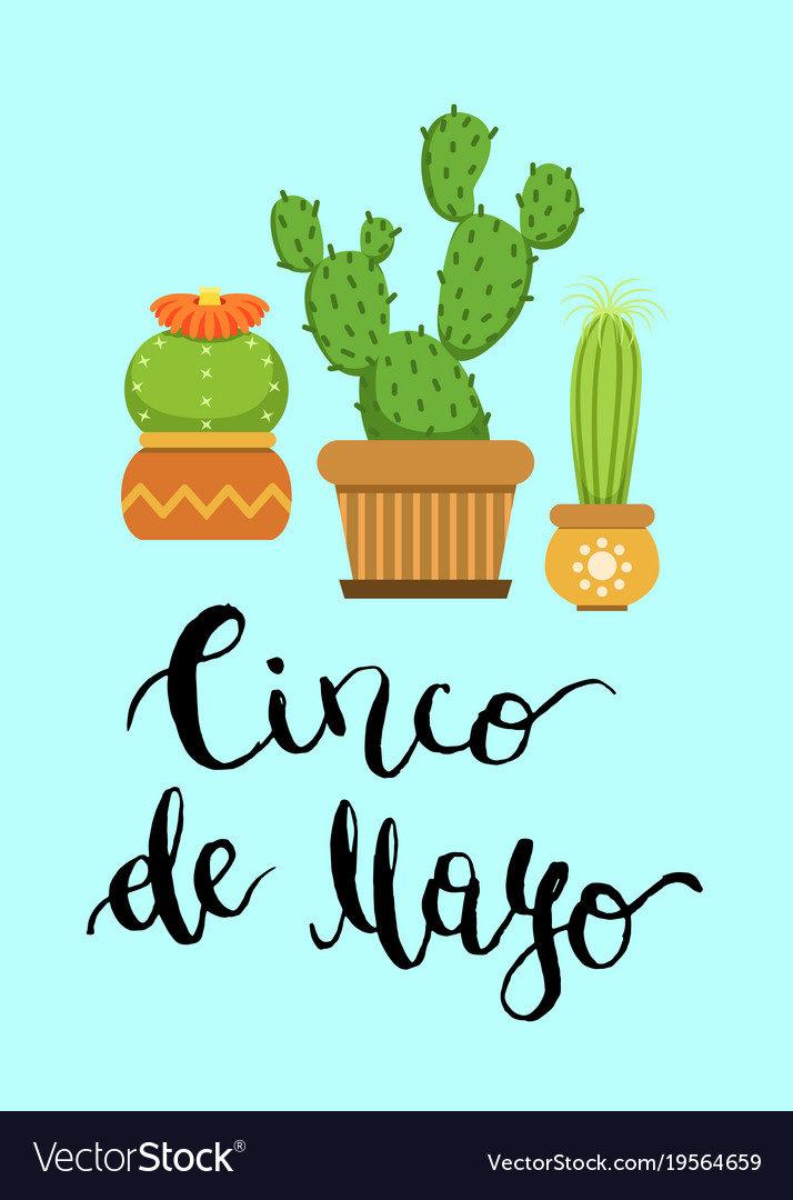 Cacti in pots in flat style and cinco de mayo