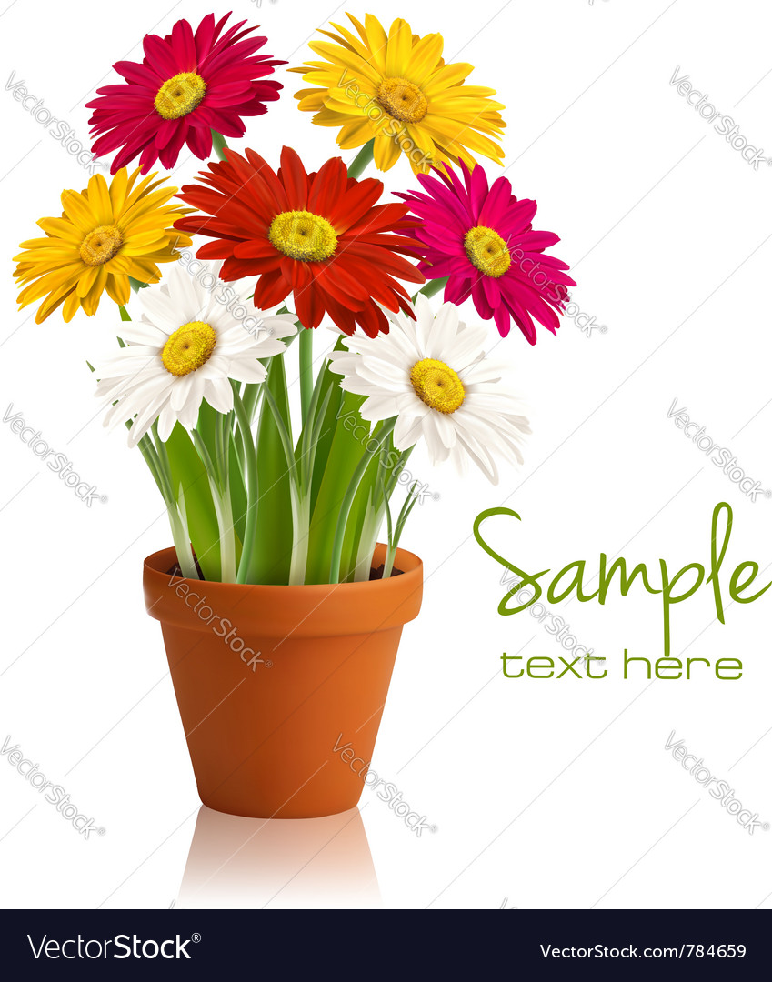 Fresh spring flowers vector image