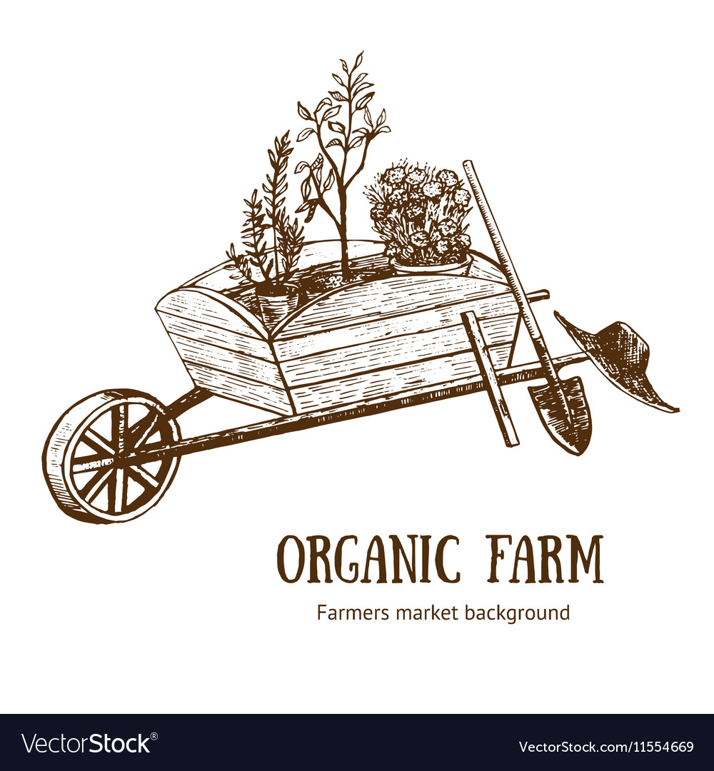 Garden Cart Organic Farm Hand Draw Sketch