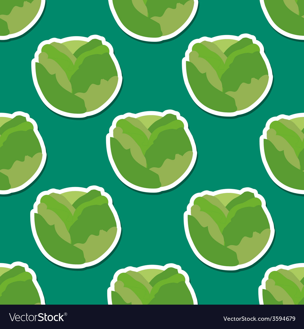 Cabbage pattern Seamless texture vector image
