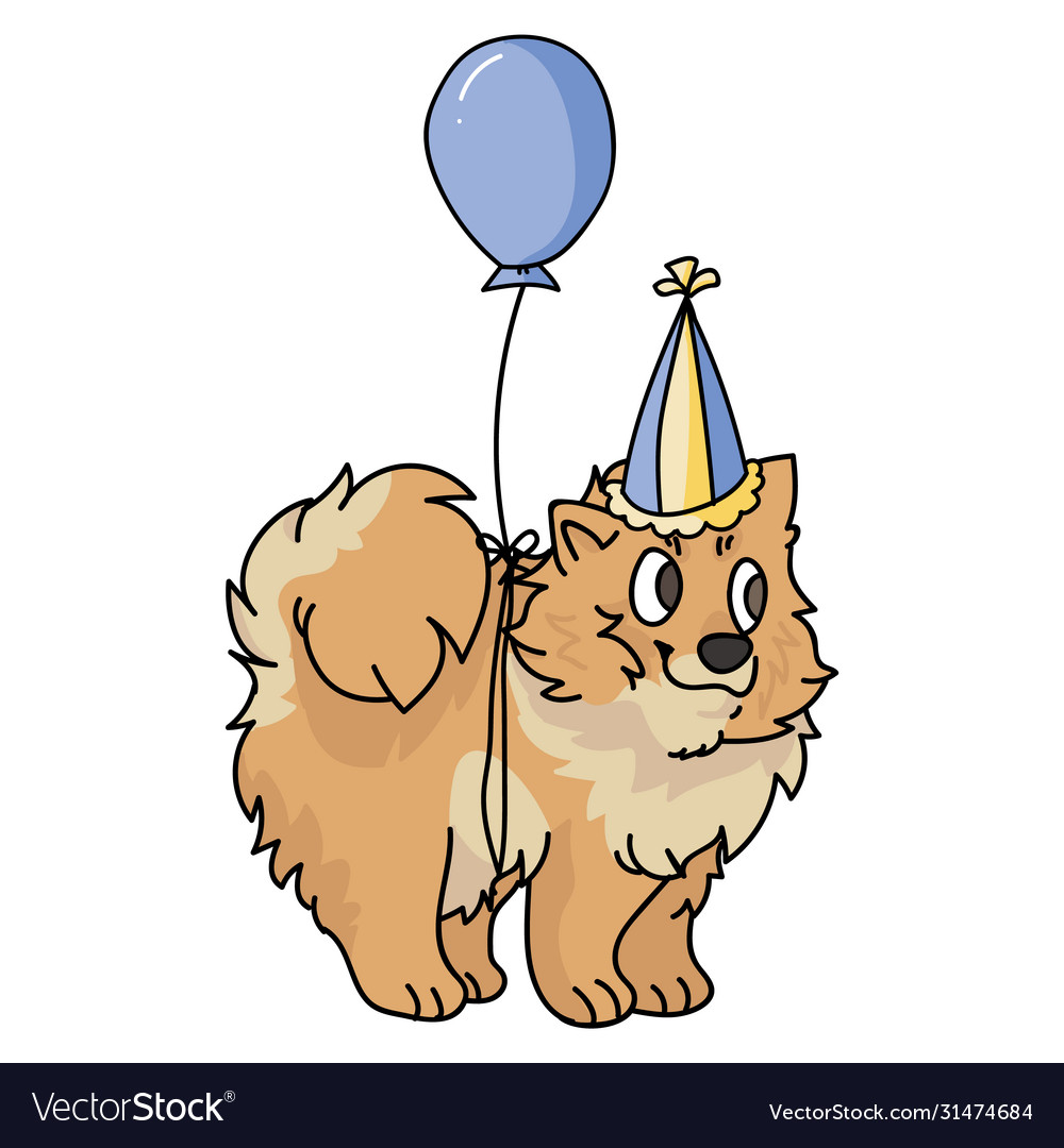 Cute Cartoon Pomeranian Puppy With Party Hat Vector Image