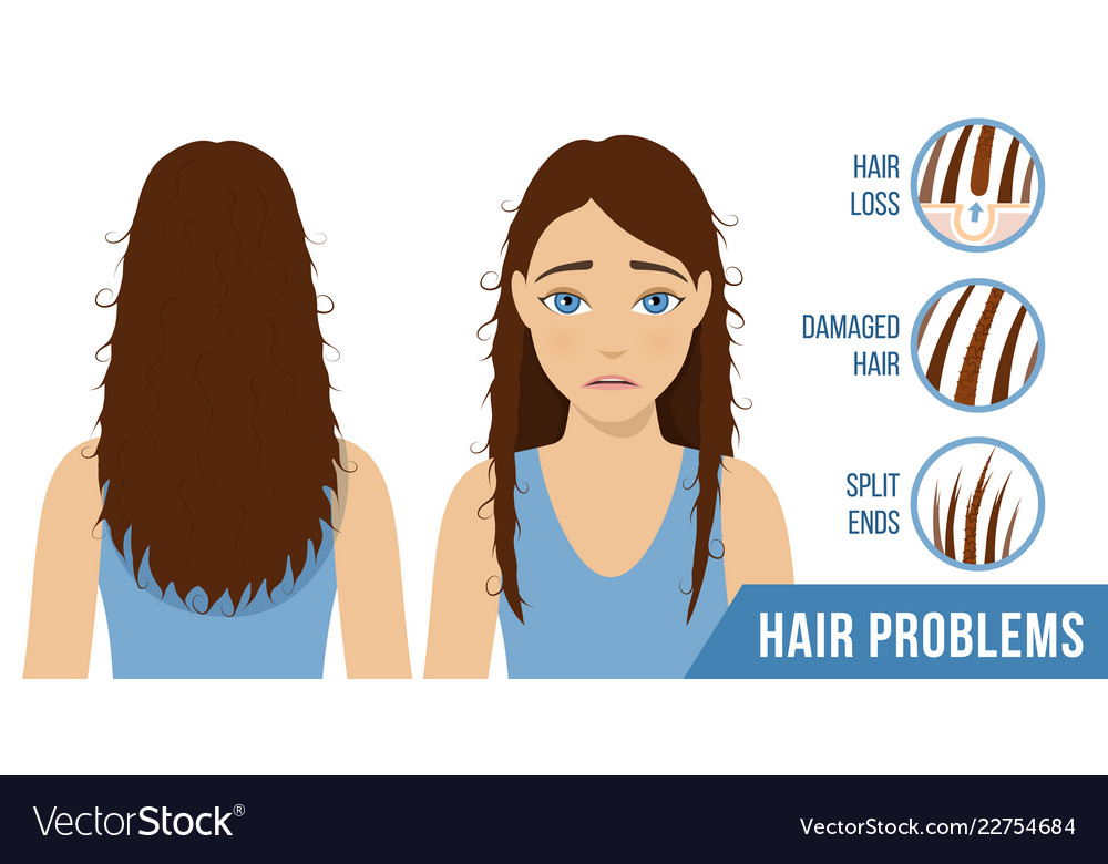 Hair Care Treatment Royalty Free Vector Image Vectorstock