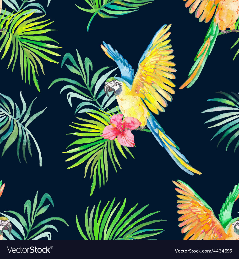 Macaw seamless pattern Black background